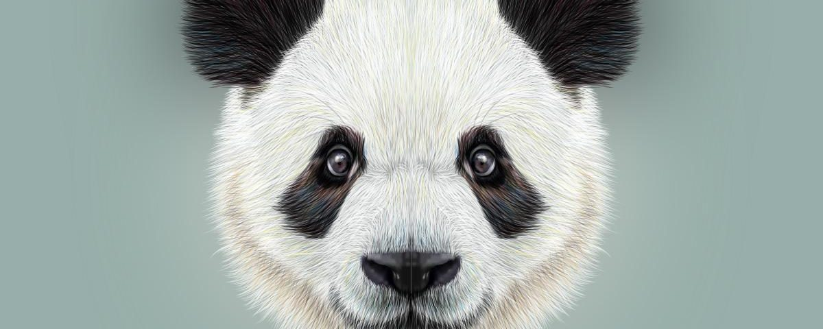 panda proof 1200x480 - Learn how to get your site Panda Proof?